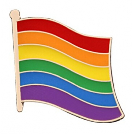 Pin's Drapeau Rainbow