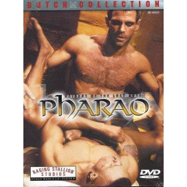 Raiders of the Lost Arse Pharao DVD