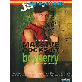 Massive Cocks At Boyberry DVD